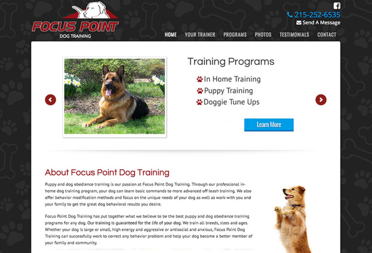 Focus Point Dog Training